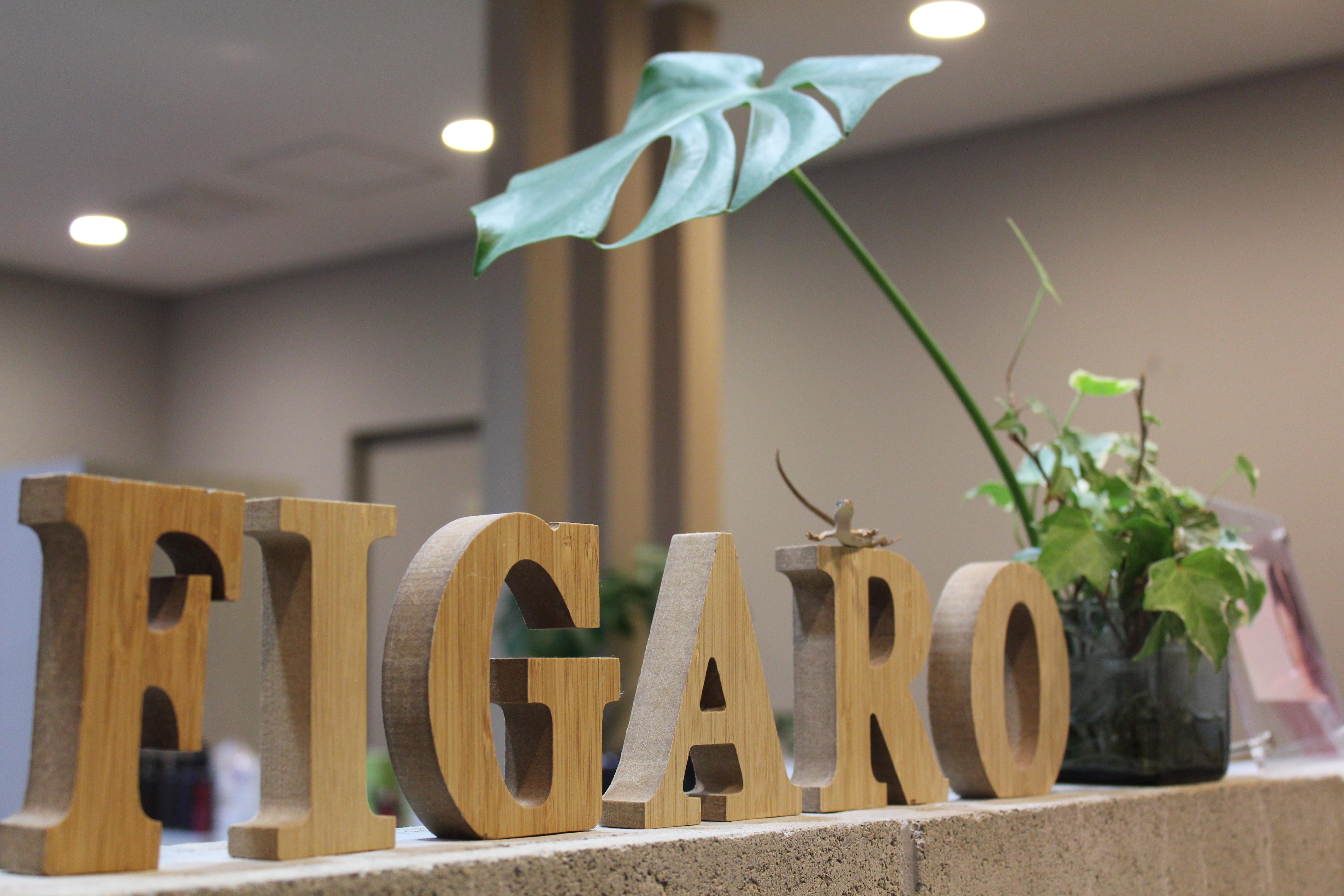 http://figaro-hair.com/blog/IMG_6061.JPG